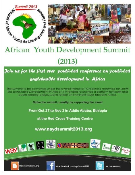 Flyer, AYD summit, Addis Ababa, 2013